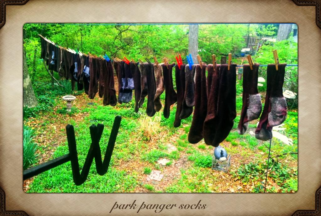 park ranger socks